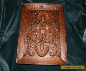 Exceptional 19th Century Carved Tiger Oak Cabinet Panel for Sale
