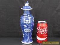 Good Antique Chinese 19th C Prunus Pattern Vase - Signed Kangxi