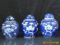 Three Antique Chinese 19th C Kangxi Style Prunus Pattern Tea Caddys / Jars