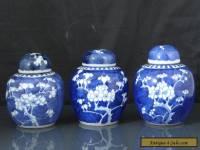 Three Antique Chinese 19th C Kangxi Style Prunus Pattern Tea Caddys / Jars