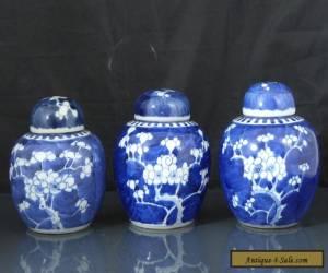 Three Antique Chinese 19th C Kangxi Style Prunus Pattern Tea Caddys / Jars for Sale