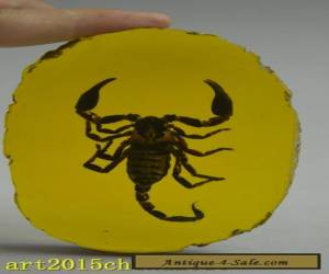 china handwork collectible amber inlay scorpion lucky statue for Sale