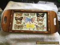 REAL BUTTERFLY TRAY GLASS TOP WOOD INLAY ART RARE SPECIMENS ART DECO STUNNING