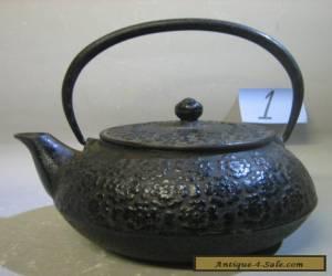 Vintage antique Japanese handmade cast iron teapot. RARE for Sale