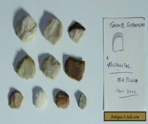 Aboriginal stone scappers Quantity 10  Microliths  GROUP 2  for Sale