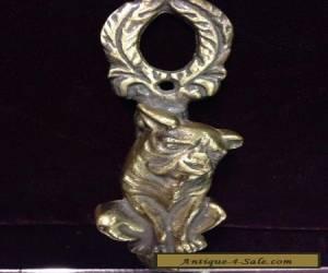 VTG. Brass British Bulldog / Boxer Door Knocker for Sale