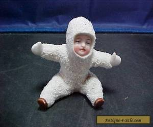 German Snow Baby for Sale