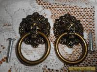 Brass Lion Head Door Pulls Dark Creepy Face Knob Set of 2