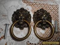 Brass Lion Head Door Pulls Dark Creepy Face Knob Set of 2
