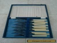 Silver Plate Boxed Faux Bone Cutlery Set