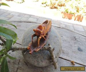 Vintage Cicada for Decoration for Sale