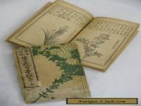 "Taisho Antique! 2 Books of ""Ikeno-bo"" Floral Art V550"
