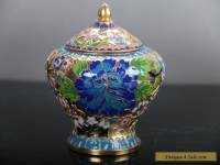 Exquisite Chinese Cloisonne handmade painting flower Storage tank E305