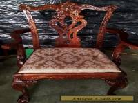 Mahogany Chippendale Dining Captain's Chair w/Cushion ~ Carved Claw Ball Feet