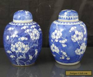Two Antique Chinese 19th C Prunus Pattern Tea Caddys / Jars - Signed Kangxi for Sale