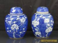 Two Antique Chinese 19th C Prunus Pattern Tea Caddys / Jars - Signed Kangxi