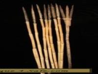 Set of 8 New Guinea Arrows 1950s